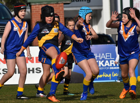 Round 8 Match Report - Jets U10 Girls vs Mitcham