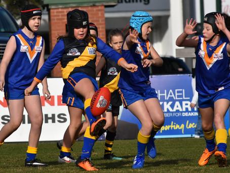 Round 8 Match Report - Jets U10 Girls vs Mitcham
