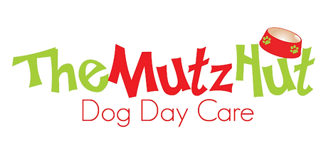 Mutz-WEB_edited.png