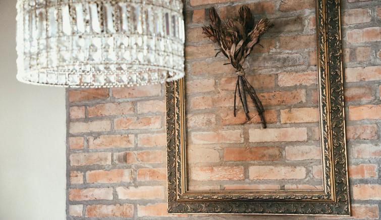 Protea - Planta símbolo da África do Sul.