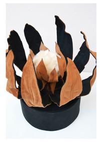 Protea de Vaso Baixo