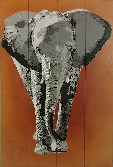 'Africa' 60x40cm T+G Wooden Board