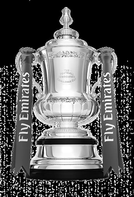 FA Cup 7 copy.png