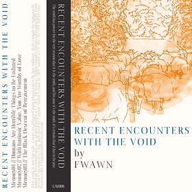 fwawn - Recent Encounters with the Void