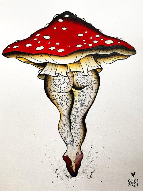 Tushroom By Cecilia Granata