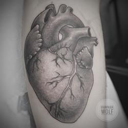 anatomicalhearttattoo