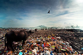Pollution-environment-by-Saravanan-Dhand