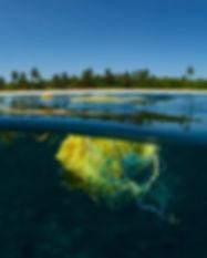 Island-Plastic_edited.jpg