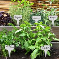Plant Tags.