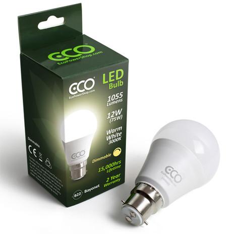 eco bulb home slideshow.jpg