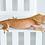 Thumbnail: Phantom Pinstripe Crested Gecko