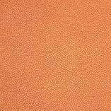Santiago copper.jpg
