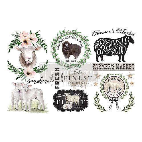 Sweet Lamb-     Prima Mini Transfer