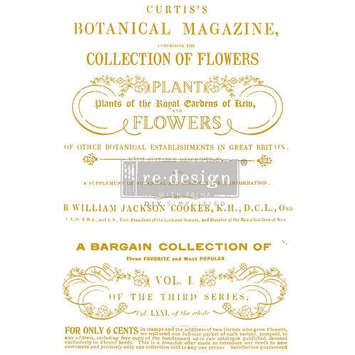 Flower Collector  -Prima Transfer