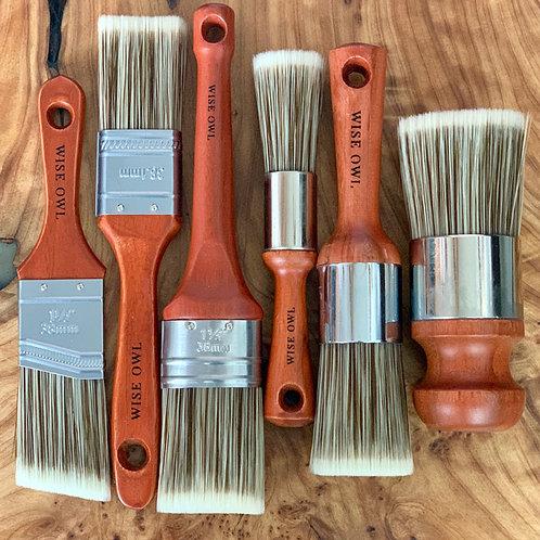 Wise Owl Premium Brushes - Multi Sizes