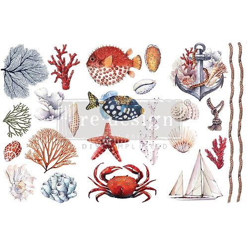 Amazing Sea Life-     Prima Mini Transfer