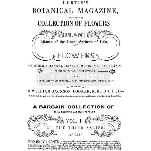 Botanical Magazine - Prima Transfer