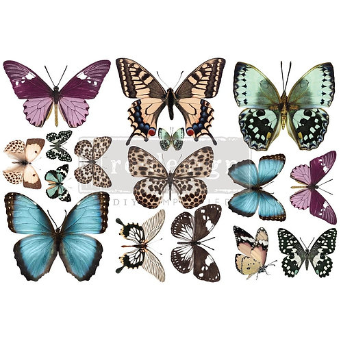 Butterfly-     Prima Mini Transfer