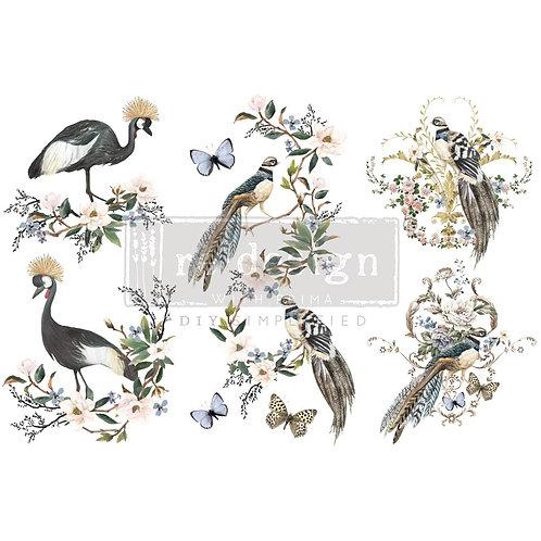 Rare Birds-     Prima Mini Transfer