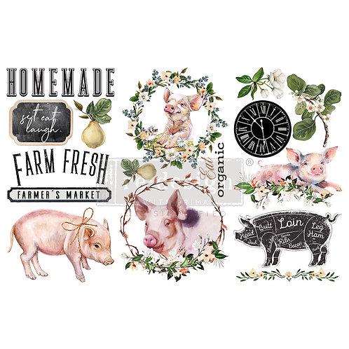 Farm Fresh-     Prima Mini Transfer