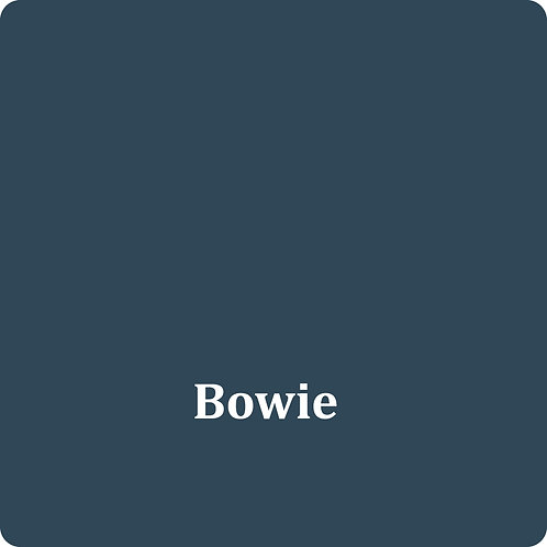 Bowie  -Chalk Synth Paint