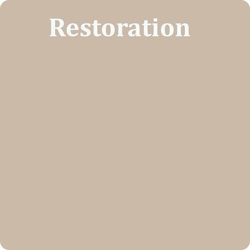 Restoration  -Chalk Synth Paint