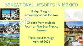 Live Auction Sensational Resorts in Mexi