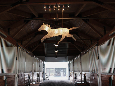 How to Choose the Right Barn