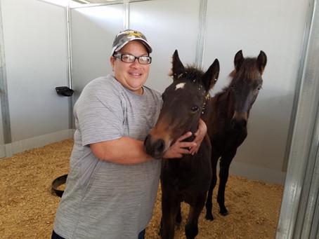 Meet Our Staff: Nikki Hernandez