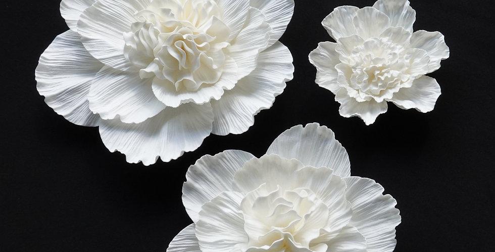 Peony Wall Flowers - White