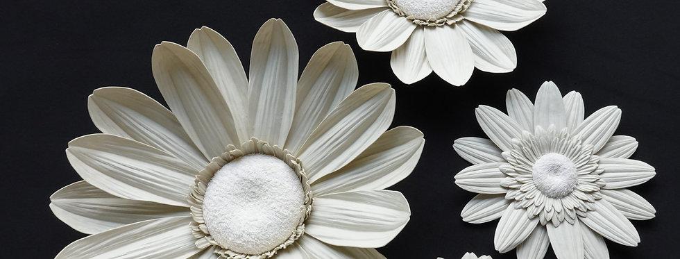 Gerbera Wall Flowers - Yellowish