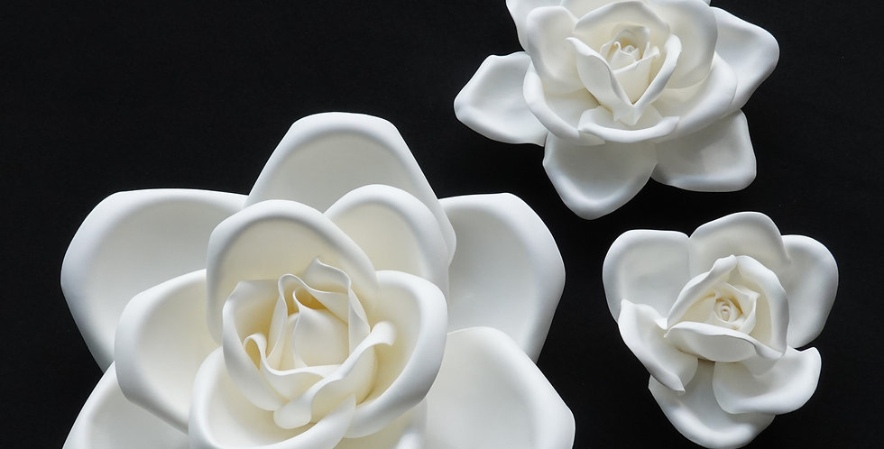 Rose Wall Flowers - White