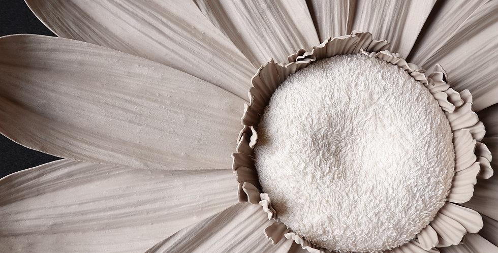 Gerbera Wall Flowers - Pastel Brown
