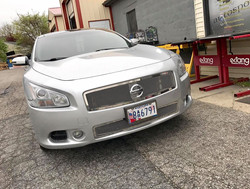 Trex Grilles Stainless Steel Mesh Grill