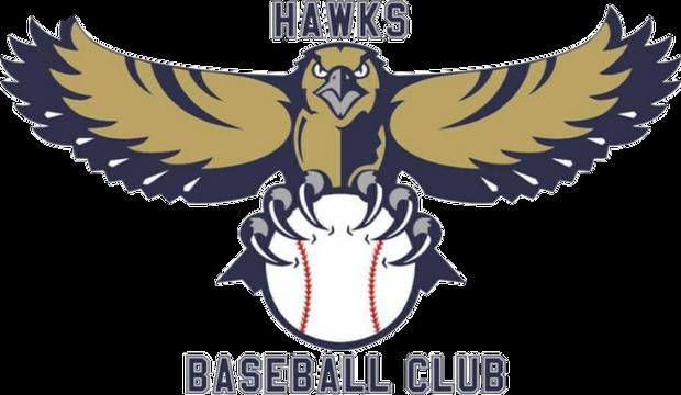 Hawks Baseball Club, IN