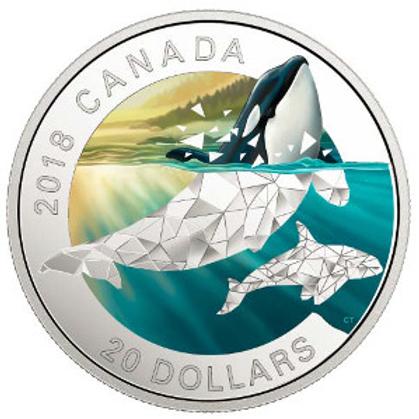 Geometric Fauna: Orca