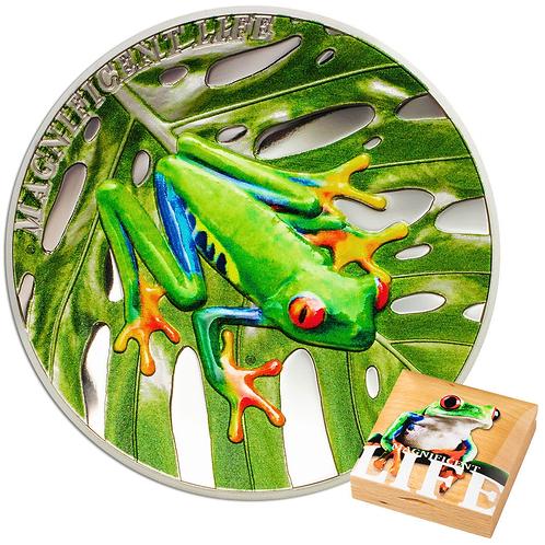 Granoteta - Tree Frog