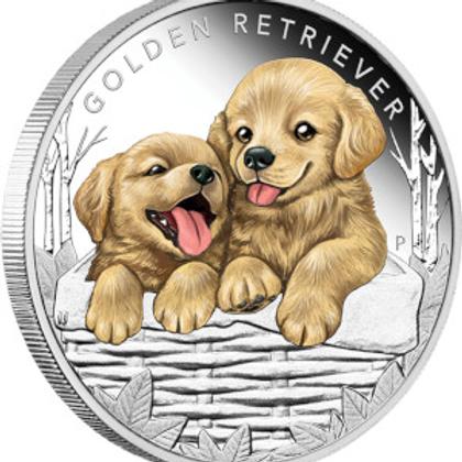 Puppies: Golden Retriever