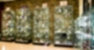 Pollet -  Monedes d'Art-26.jpg