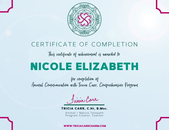 Animal Communication Diploma Certificate
