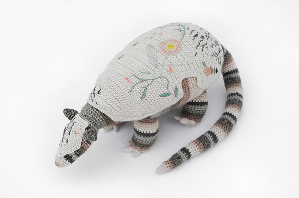 tatu carreta - giant armadillo - MICA 2013