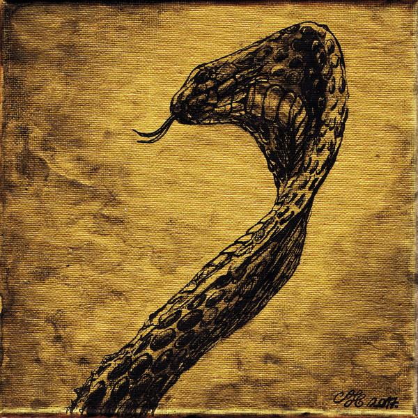 Kígyó / Snake / Schlange