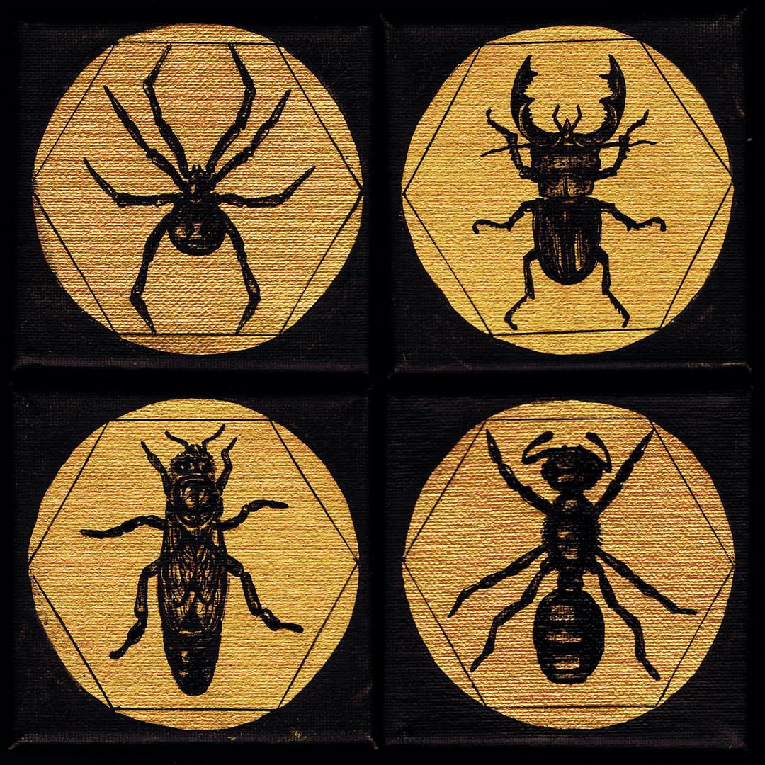 Bogarak / Bugs / Insekten