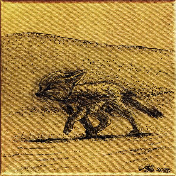 Sivatagi róka / Fennec Fox / Wüstenfuchs