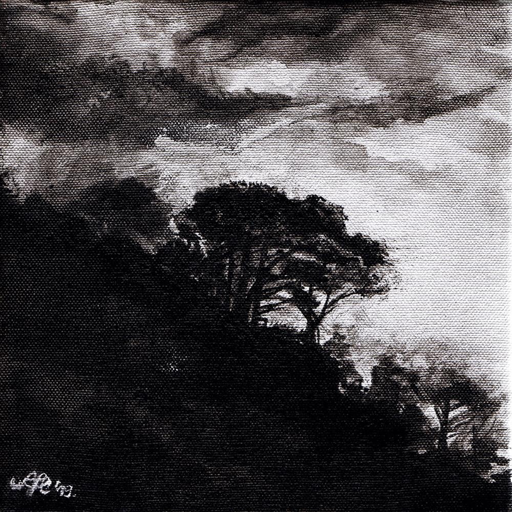 Titokzatos erdő / Mistic forest / Mystischer Wald