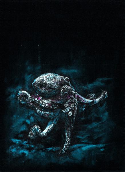 Polip / Octopus / Polyp