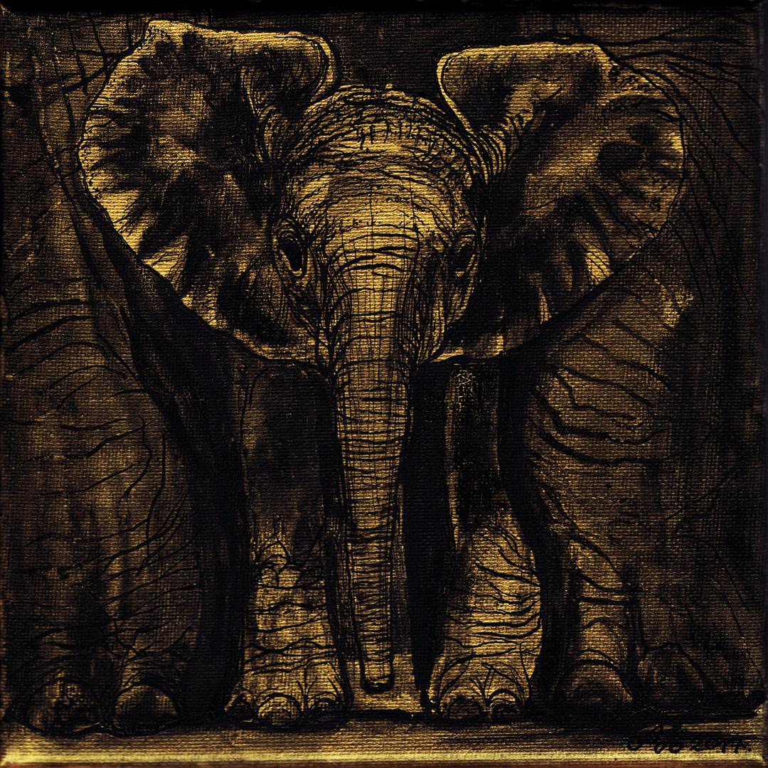 Elefánt / Elephant / Elefant