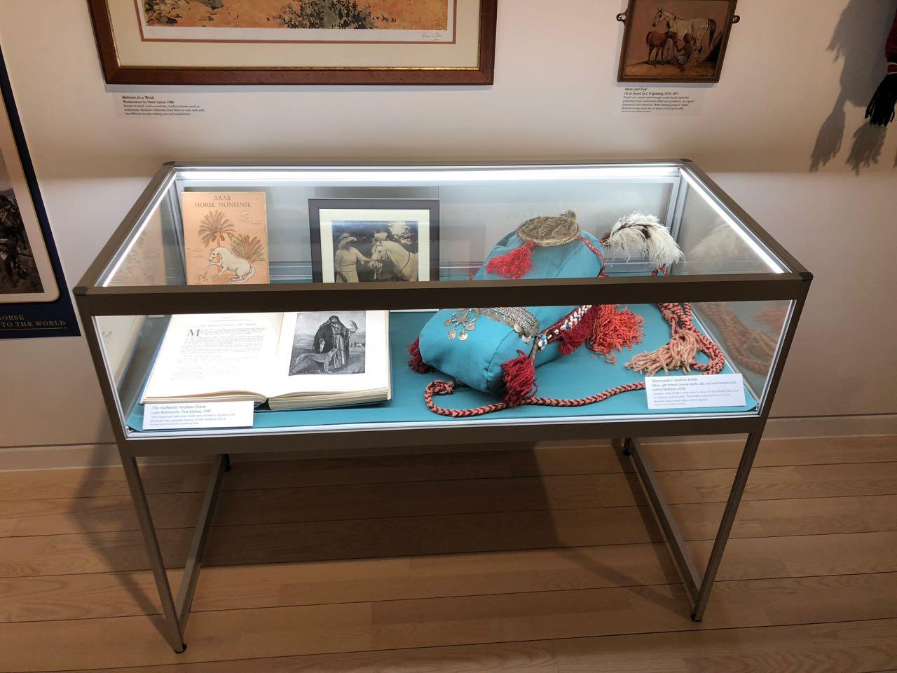 Exhibition Case 1