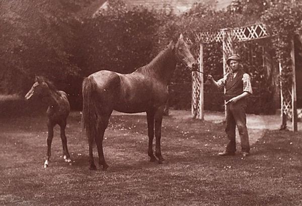 Hagar and harik 1884sml.jpg