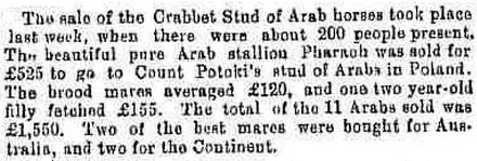 Crabbet Stud horse sale of 1882